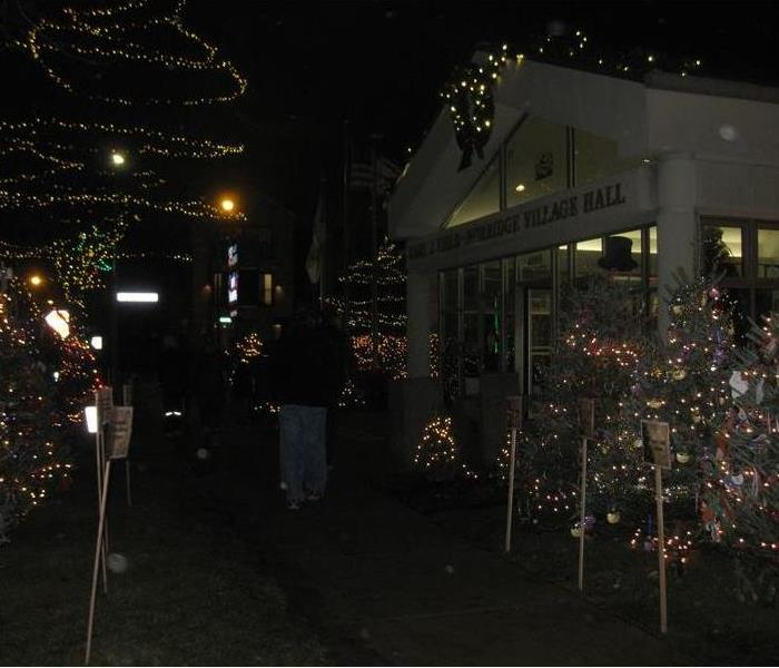 This is a photo of Christmas Trees in Norridge.